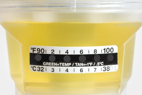 Liquid Crystal Temperature Strip